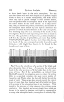 Strana 106