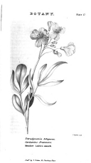 Strana 286