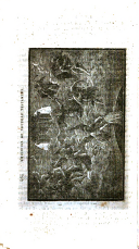 Strana 464