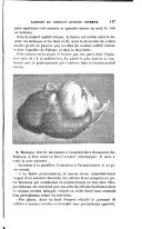 Strana 117