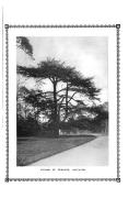 Strana 78