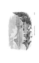 Strana 250