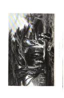 Strana 558