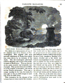 Strana 11