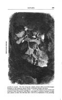Strana 507